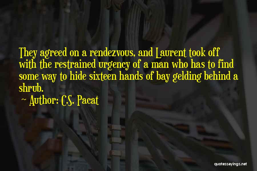 Rendezvous Quotes By C.S. Pacat