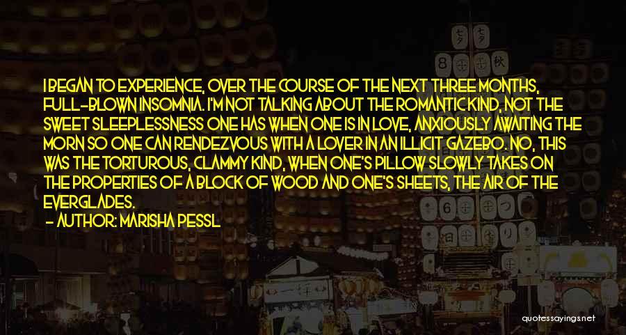 Rendezvous Quotes By Marisha Pessl
