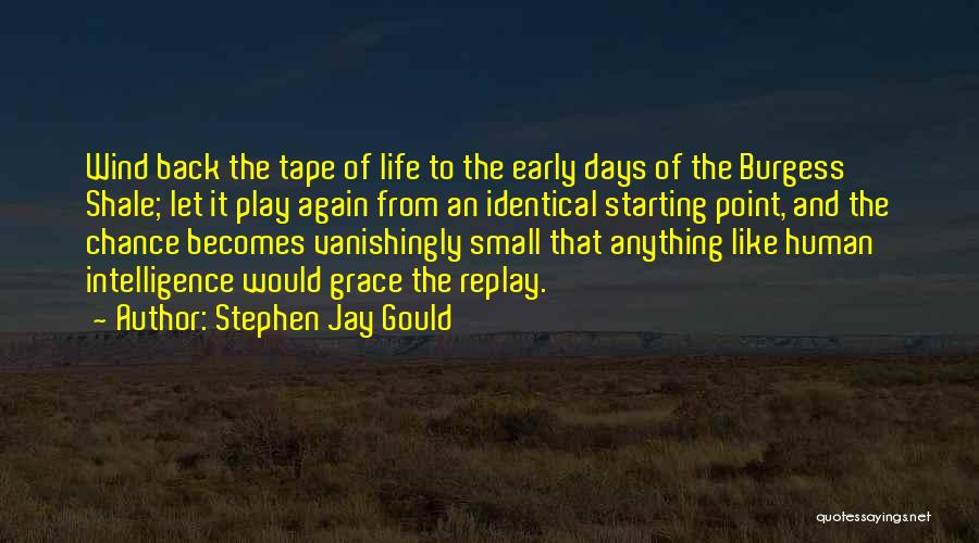 Replay Quotes By Stephen Jay Gould