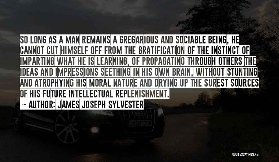 Replenishment Quotes By James Joseph Sylvester