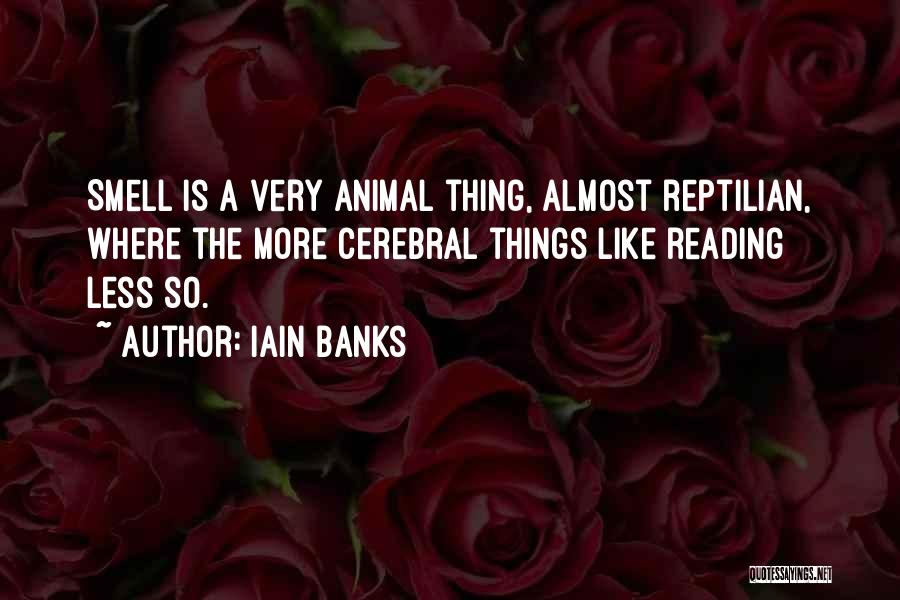 Reptilian Quotes By Iain Banks