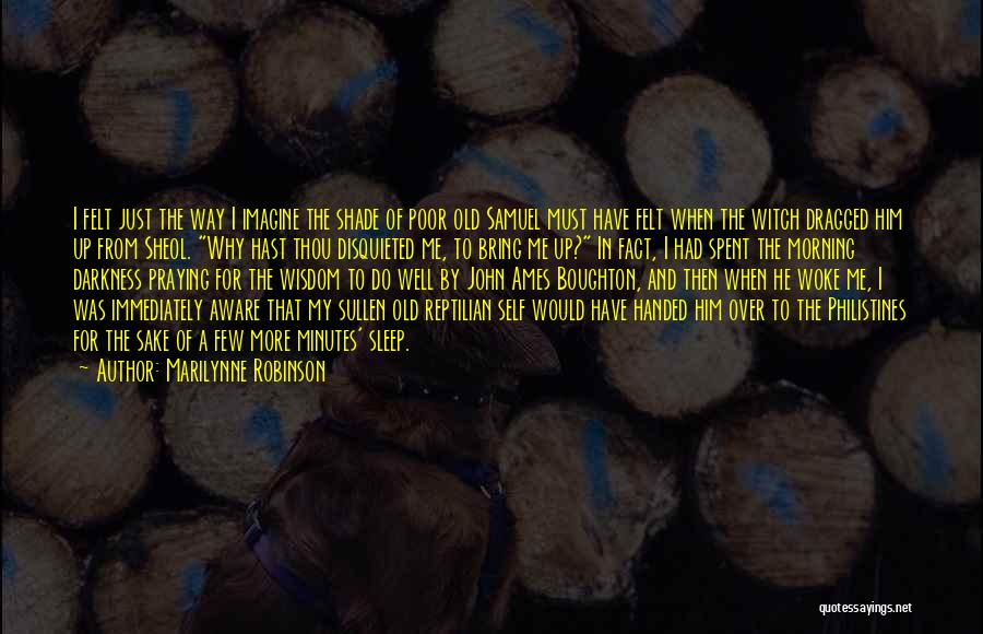 Reptilian Quotes By Marilynne Robinson
