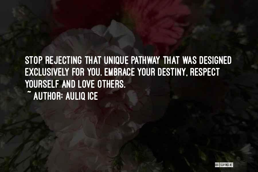 Respect For Yourself And Others Quotes By Auliq Ice