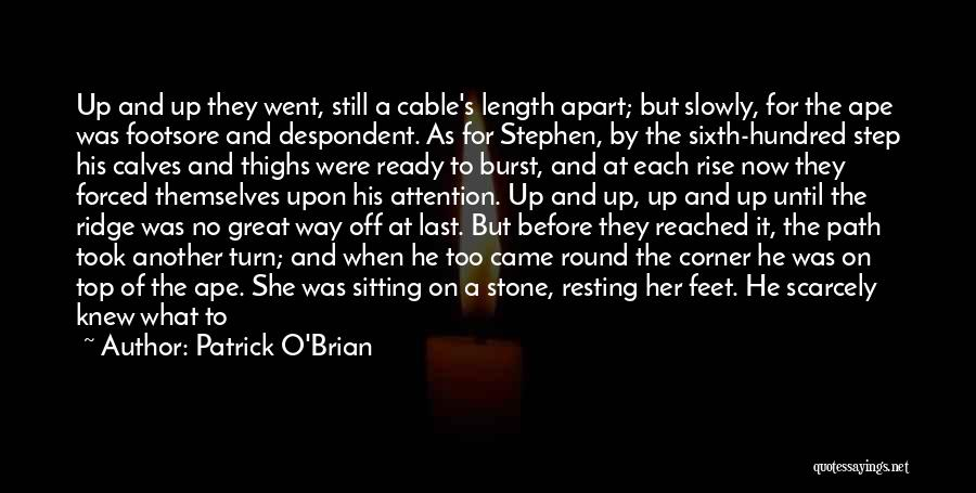 Resting Up Quotes By Patrick O'Brian