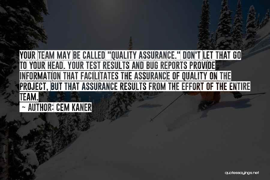 Results And Effort Quotes By Cem Kaner