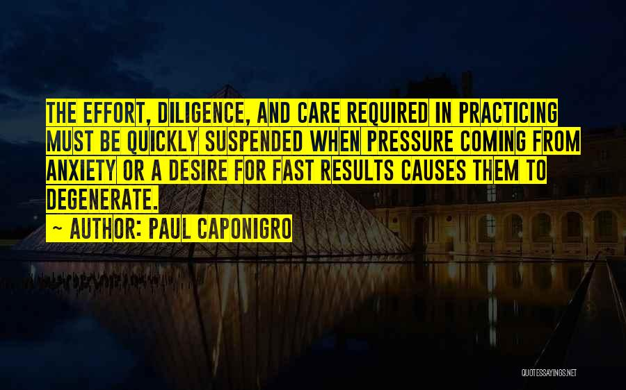 Results And Effort Quotes By Paul Caponigro