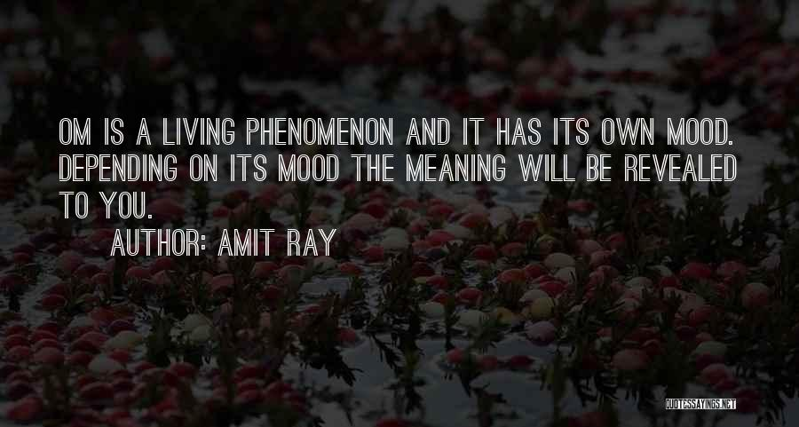 Revealed Quotes By Amit Ray