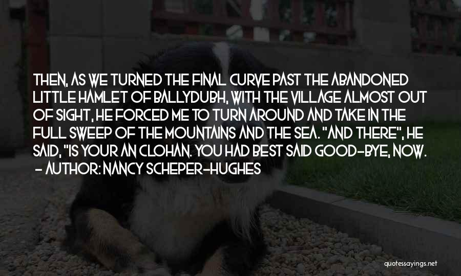 Revisiting Quotes By Nancy Scheper-Hughes