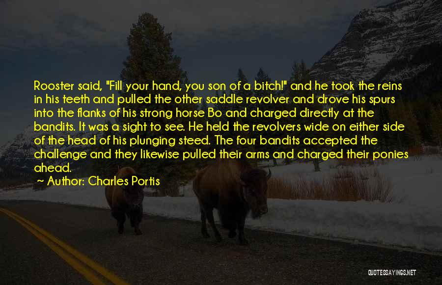 Revolvers Quotes By Charles Portis