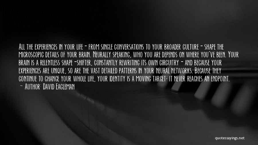 Rewriting Quotes By David Eagleman