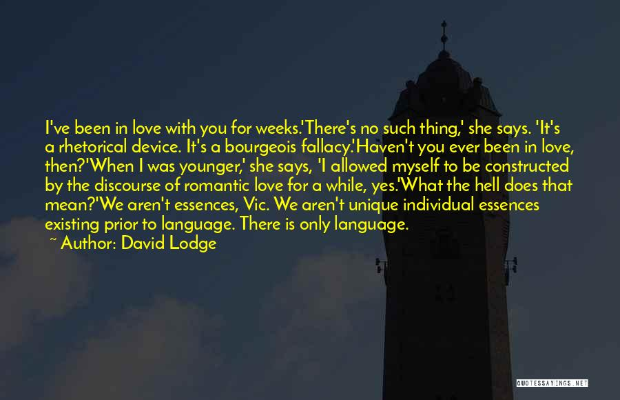 Rhetorical Device Quotes By David Lodge
