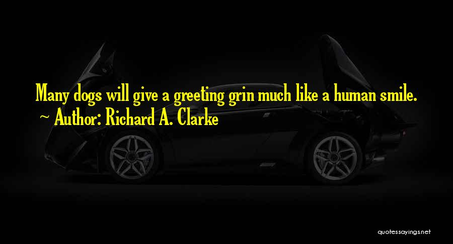 Richard A. Clarke Quotes 1555109