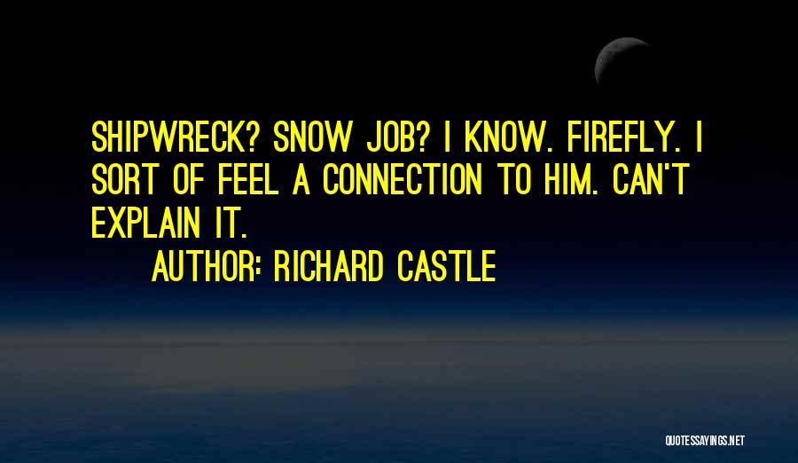 Richard Castle Quotes 784323