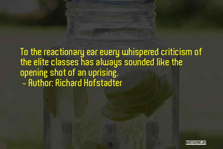 Richard Hofstadter Quotes 1408483