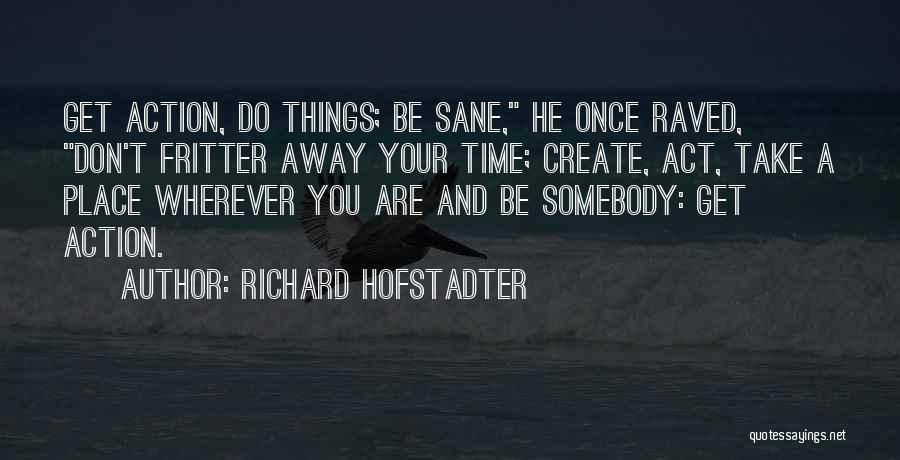Richard Hofstadter Quotes 1863430