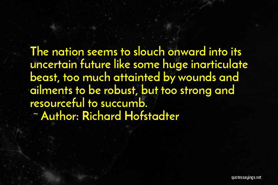 Richard Hofstadter Quotes 2047965