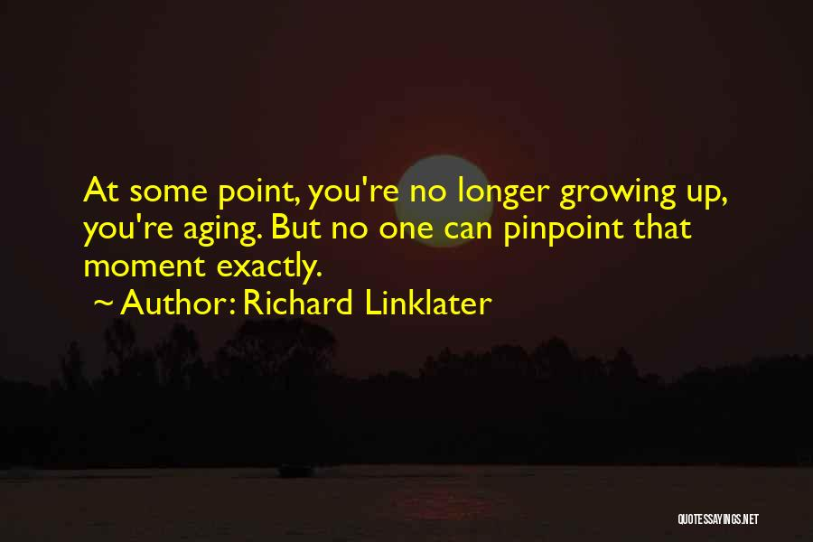 Richard Linklater Quotes 1542143