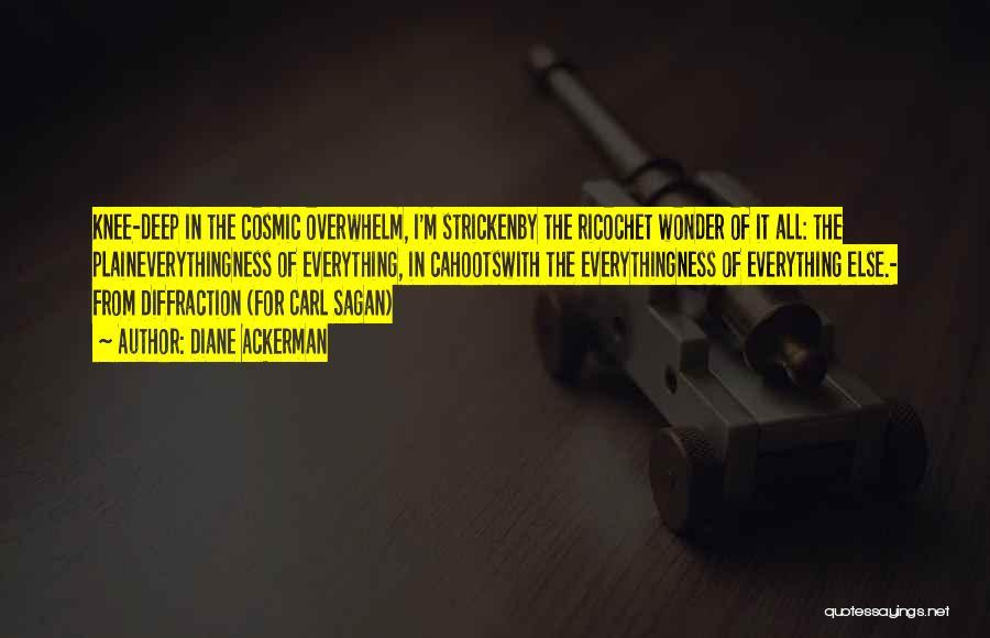 Ricochet Quotes By Diane Ackerman