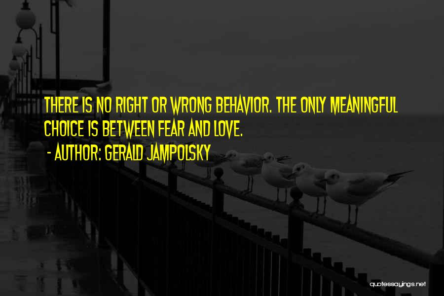Right And Wrong Choices Quotes By Gerald Jampolsky