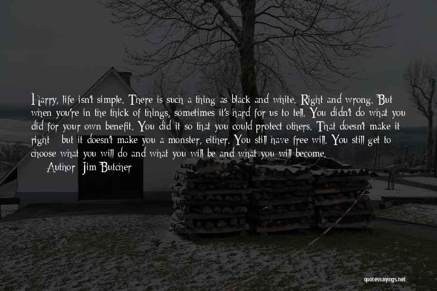 Right And Wrong Choices Quotes By Jim Butcher