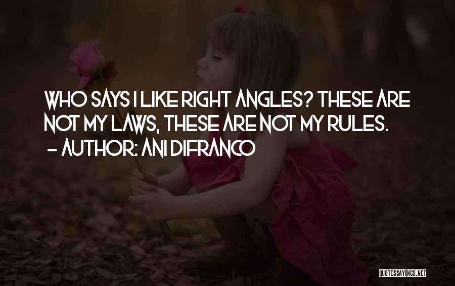 Right Angle Quotes By Ani DiFranco