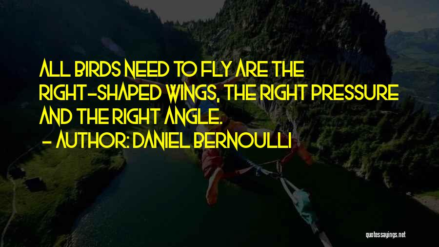 Right Angle Quotes By Daniel Bernoulli