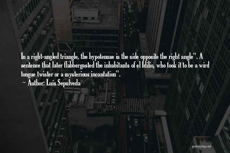 Right Angle Quotes By Luis Sepulveda