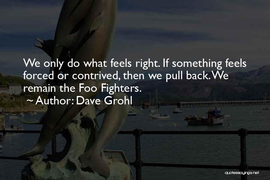 Right Fighters Quotes By Dave Grohl