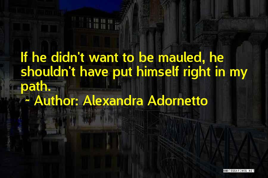 Right Path Quotes By Alexandra Adornetto