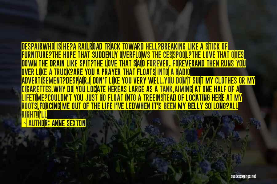 Right Track Quotes By Anne Sexton