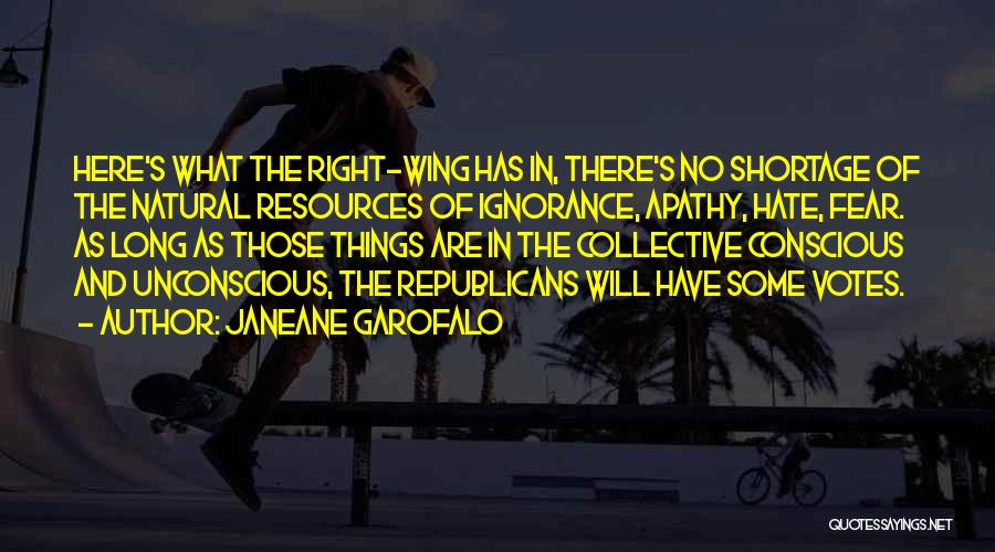 Right Wing Hate Quotes By Janeane Garofalo