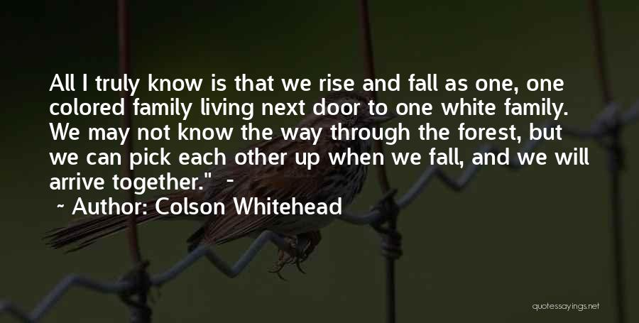 Rise Up Together Quotes By Colson Whitehead