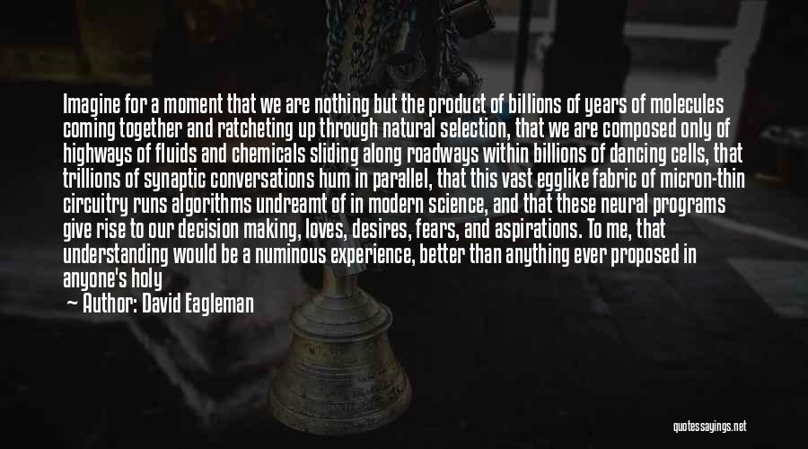 Rise Up Together Quotes By David Eagleman
