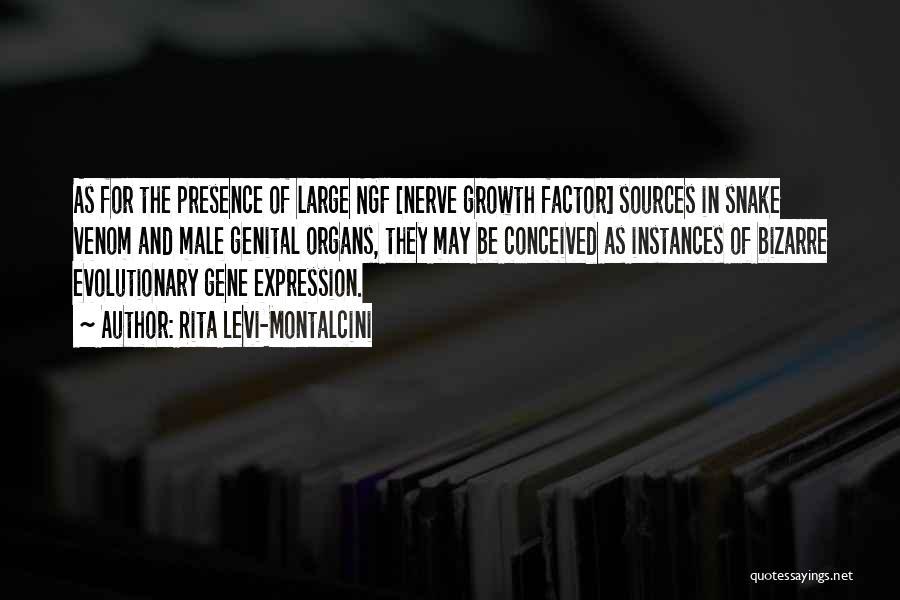 Rita Levi-Montalcini Quotes 515813