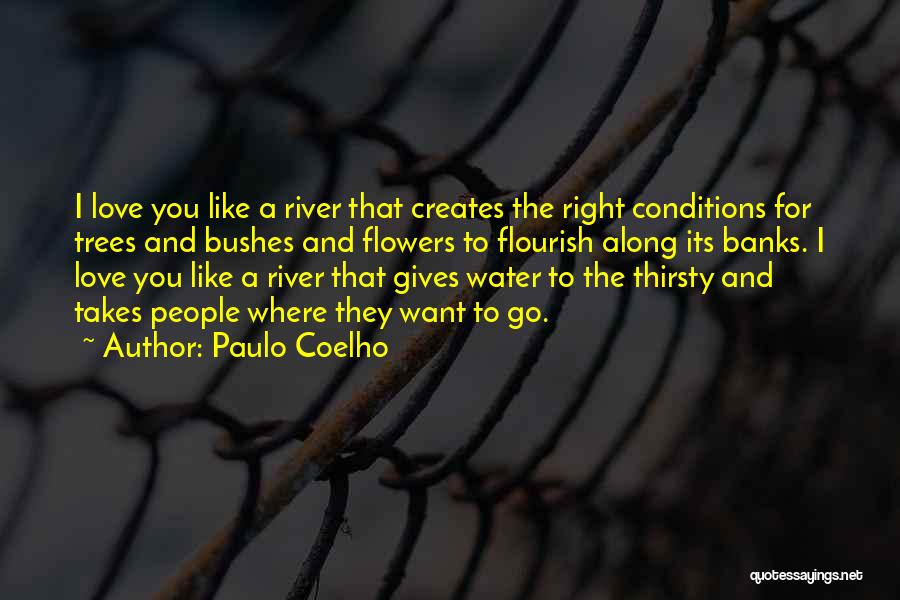River Banks Quotes By Paulo Coelho