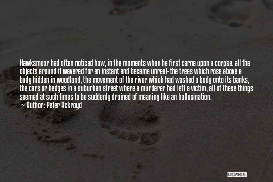 River Banks Quotes By Peter Ackroyd