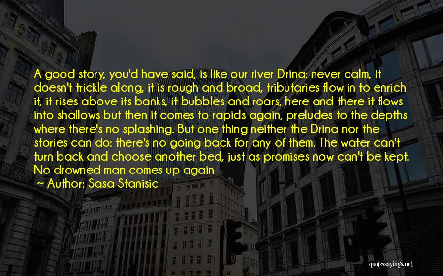River Banks Quotes By Sasa Stanisic