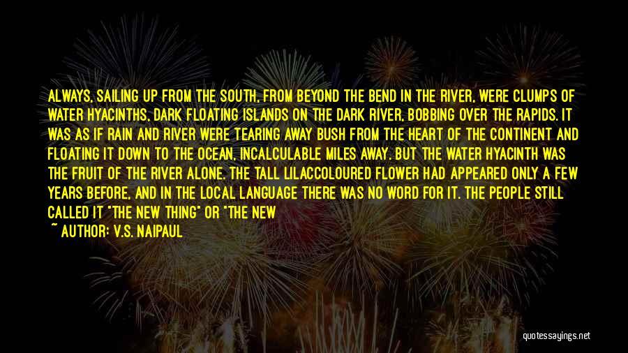 River Banks Quotes By V.S. Naipaul