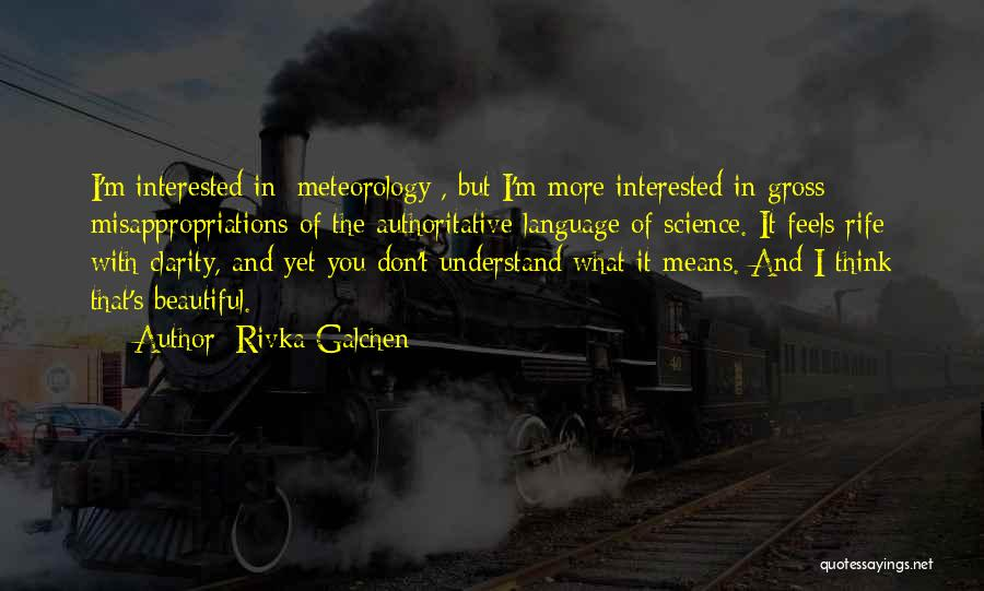 Rivka Galchen Quotes 1464123