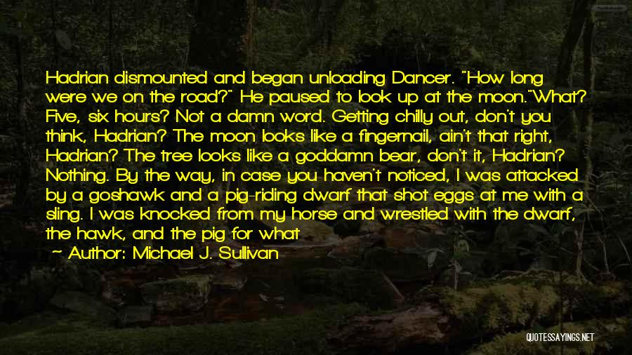 Road To You Quotes By Michael J. Sullivan