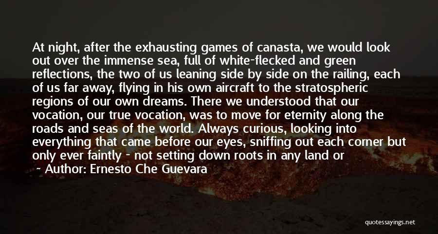 Roads And Travel Quotes By Ernesto Che Guevara