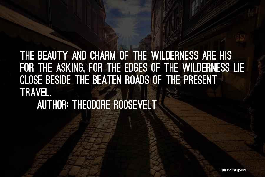 Roads And Travel Quotes By Theodore Roosevelt