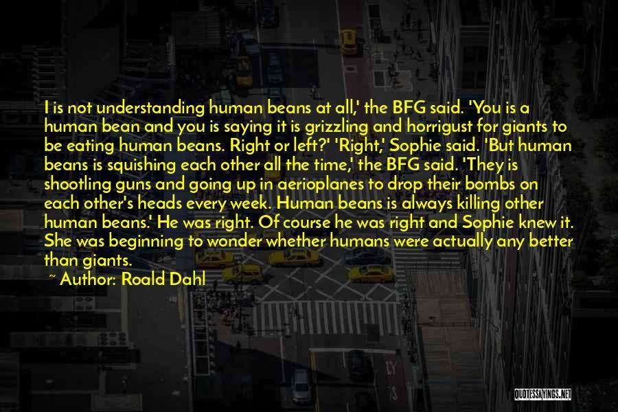 Roald Dahl Quotes 1581875