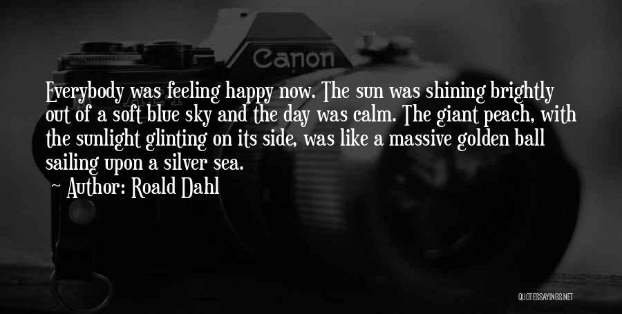 Roald Dahl Quotes 1639754