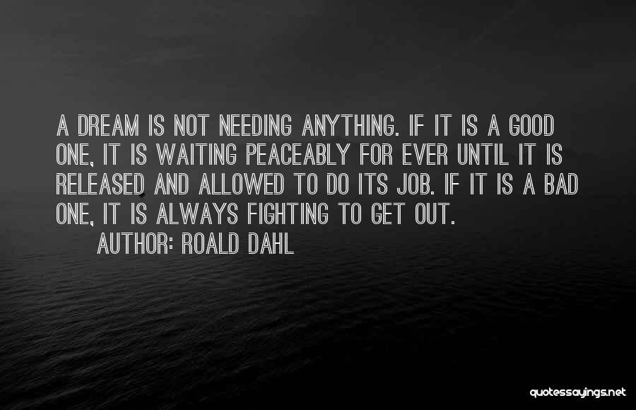 Roald Dahl Quotes 1996480