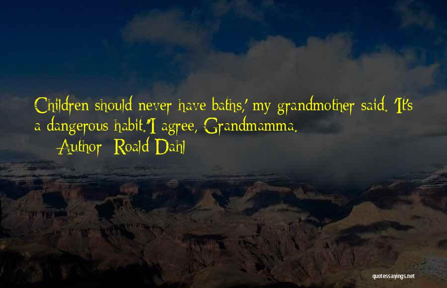 Roald Dahl Quotes 2029327