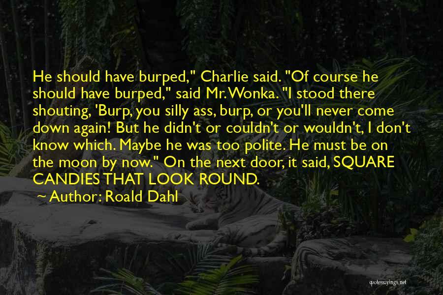 Roald Dahl Quotes 210639