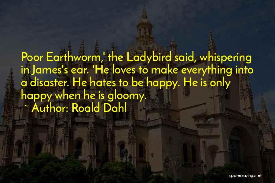 Roald Dahl Quotes 365115