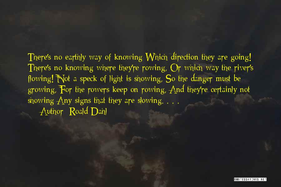 Roald Dahl Quotes 388777