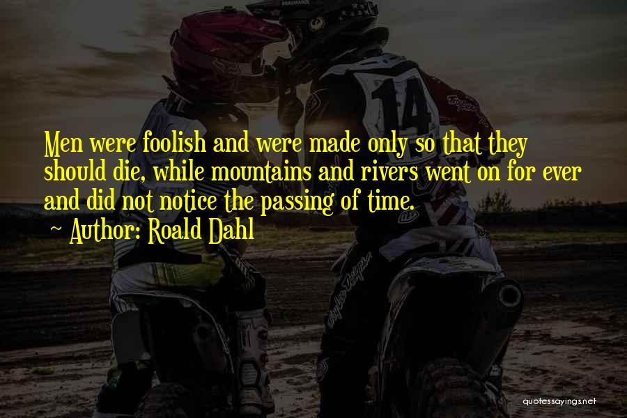 Roald Dahl Quotes 438955
